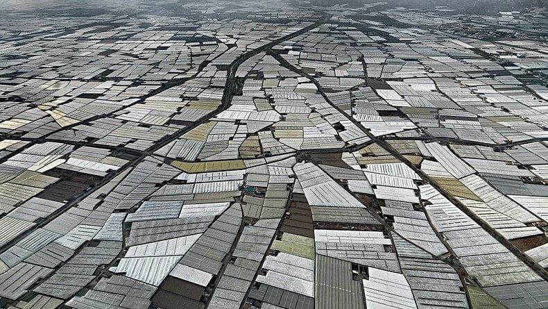 Plantagen in Almeria