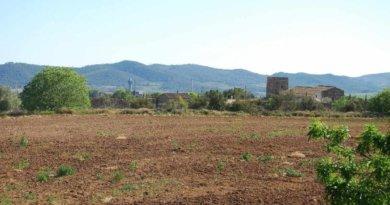 An der Algarve hat es seit sieben Monaten fast nicht geregnet und die Dürre ist extrem.