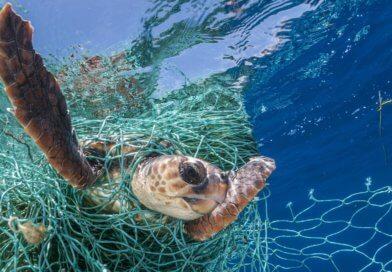Fischernetze machen mehr als 85% der Kunststoffabfälle in den Meeren aus.