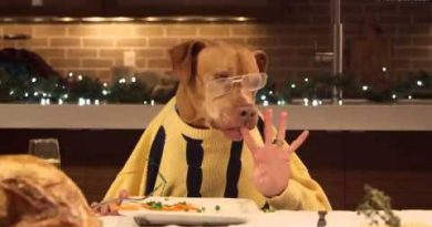 Haustiere im Restaurant erlaubt