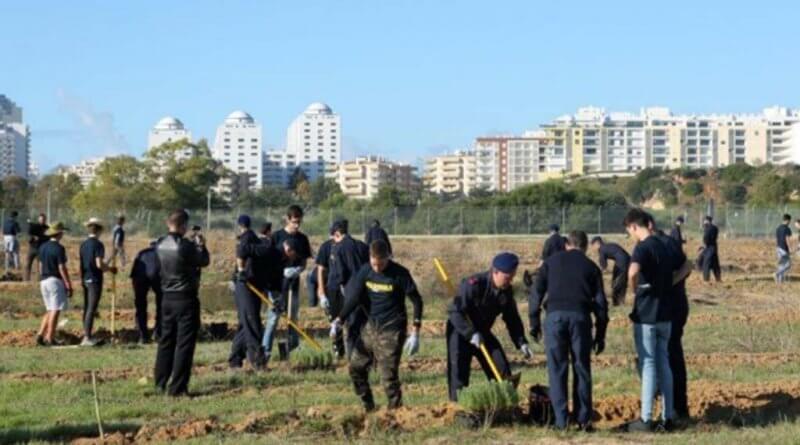 5.000 Bäume in Portimão am Tag des einheimischen Waldes gepflanzt