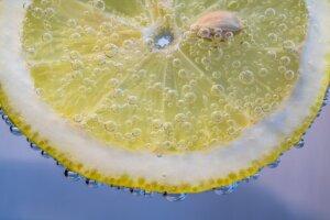 Zitrusfrüchte der Algarve
