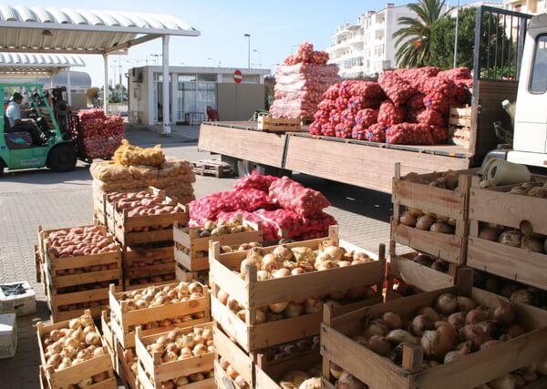 Bauernmarkt Pto