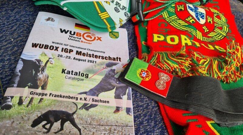 Boxer WM